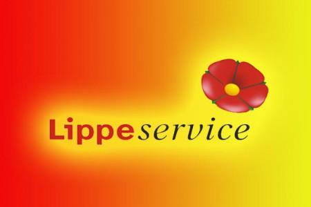 Lippe-Sevice-600x400-450x300